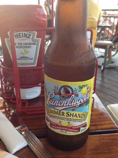 Shandy - Put In Bay