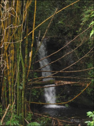 Hawaii Trip 2003 (132)