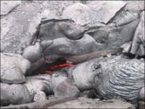 Hawaii Trip 2003 (151)