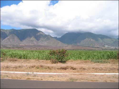 Hawaii Trip 2003 (178)
