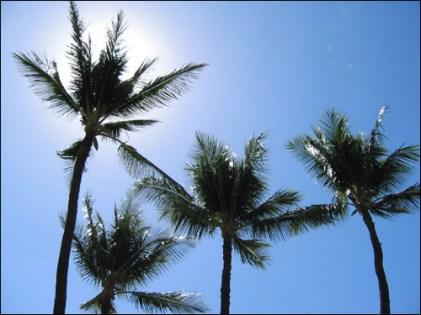 Hawaii Trip 2003 (182)
