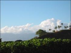Hawaii Trip 2003 (189)