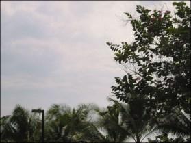 Hawaii Trip 2003 (22)