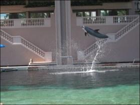 Hawaii Trip 2003 (42)