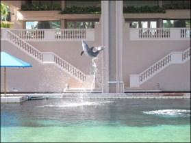Hawaii Trip 2003 (43)