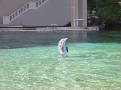 Hawaii Trip 2003 (50)