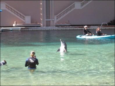 Hawaii Trip 2003 (56)