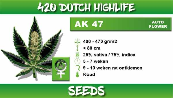 Ak 47 Autoflower
