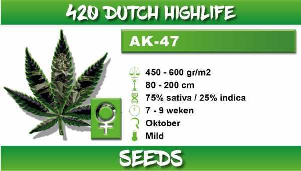 420 Dutch Highlife AK 47