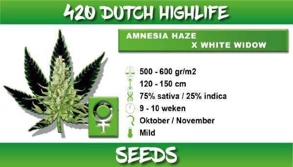 Amnesia Haze x White Widow