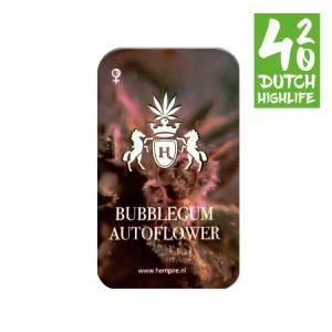 Cbd Critical 420 Dutch Highlife Wietzaden