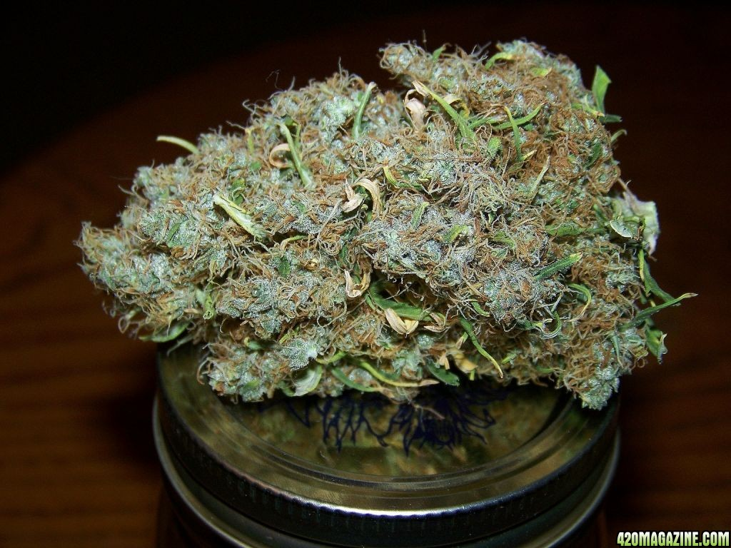 Hd Wallpapers Smoke Weed 420 Magazine S Nug Of The Month Contest February 2009