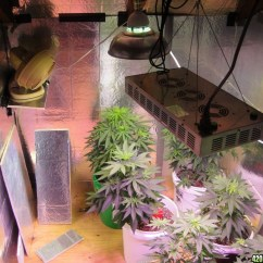 Grow Room Designs With Pictures And Diagram A Of Non Luminous Bunsen Burner Flame Indoor Ventilation Marijuana