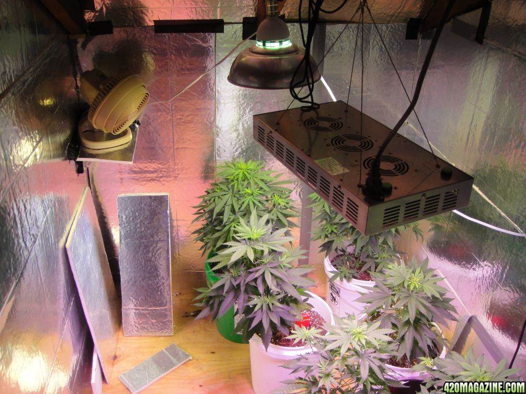 grow room ventilation diagram switch to light wiring hydroponic gardening system growing one zero