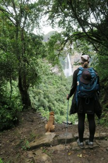 Jordan watches the falls, the dog waits for lunch.