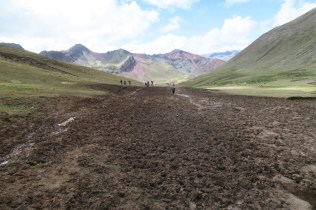 The trail as a broad scar across the slow growing altiplano.