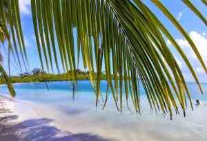 Bocas del Toro. Star Beach