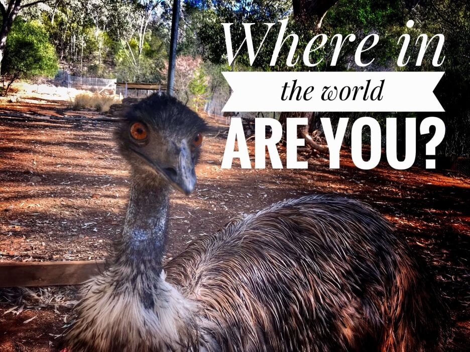 An emu in Australia with text Where in the world are you now