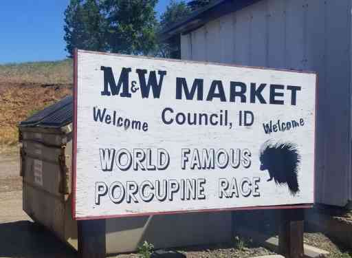 Sign for the world famous porcupine race