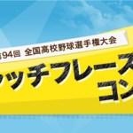 待ちに待った夏の甲子園!!