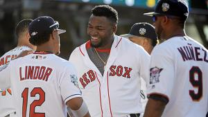 usa-david-ortiz-allstargame