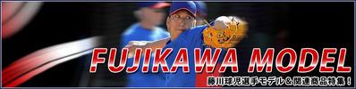 2013-fujikawa