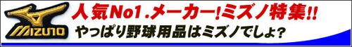 12-1_mizuno