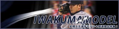 2013-iwakuma