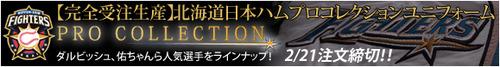 10-1-1_miz-jp-ham