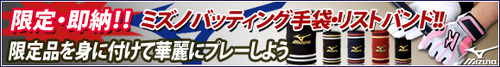 11-1-1_mizuno_kenntei