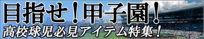 14-1-goto-koushien
