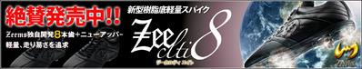 13-3-zeeclti8