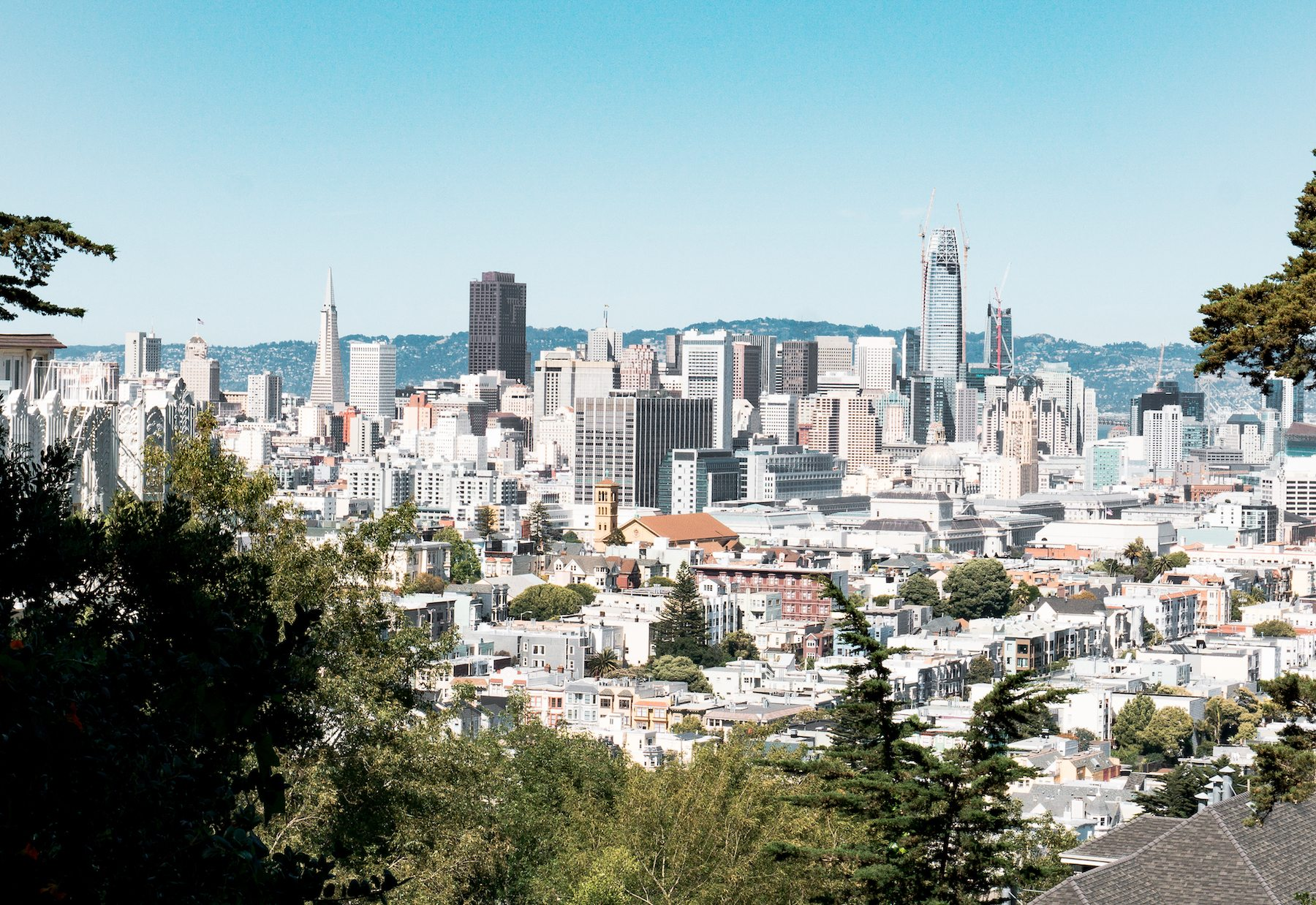 View of the City from atop Buena Vista Park. Photo: Justin Wong, 49miles.com
