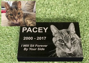 Engraved Photographic Granite Pet Memorial<br />With 5 Polished Edges