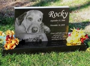 Premium Absolute Black Granite Photo Pet Monument