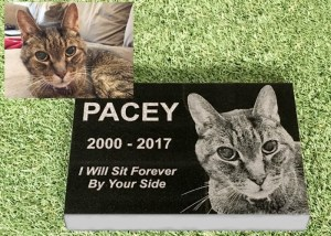 Premium Engraved Photographic Granite Pet Memorial