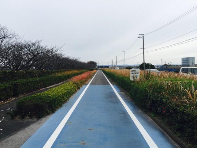 中井筋自転車道|安城市