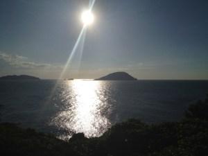 大崎展望台 | 志賀島