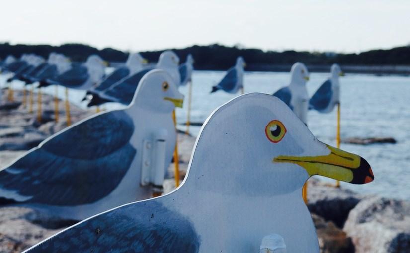 現代アートの島、愛知県西尾市の佐久島までポタリングしてきました