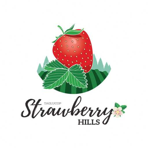 Strawberry Hills 3 4LOOP Website 00