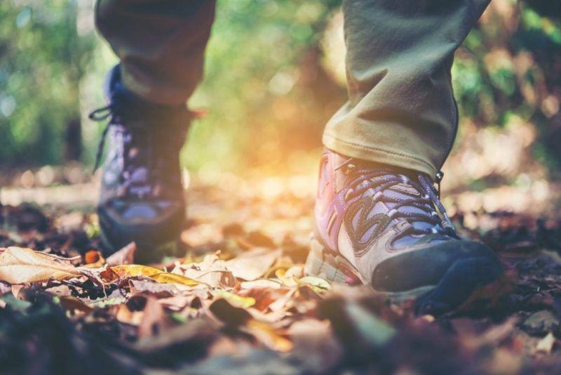 Guía sobre cómo elegir zapatos de trekking