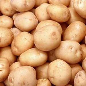 فوائد البطاطس ومتى يمكن لطفلي أن يأكل البطاطس؟