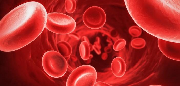 الأنيميا-فقر-الدم-و-سرطان-الدم-و-أنواع-السرطان-الاخرى