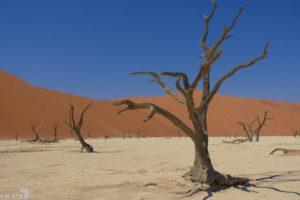 Namibië: zijn we er nu al?