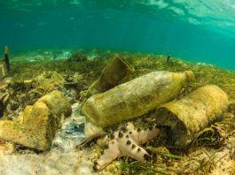Verschmutzung am Meeresgrund