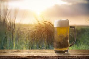 Ein Krug mit Bier