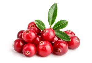 Eine Portion Cranberrys