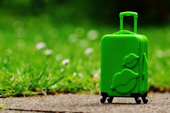 Grüner Trolley auf Wiese