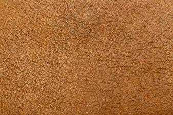 Ein Stück Leder