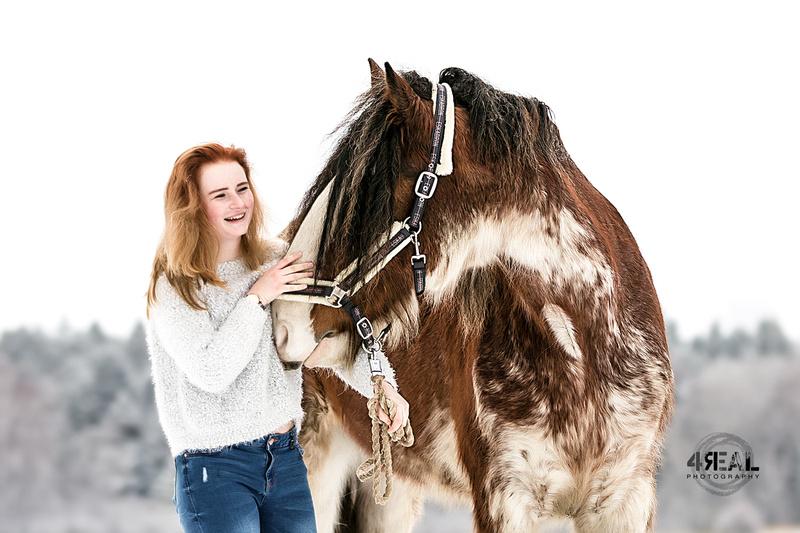 4Real Photography  Pferdefotoshooting in Wangen im Allgu